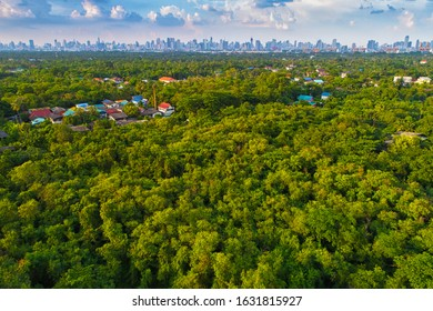 The last forest area of Samut Prakan Province, Thailand Closest to Bangkok