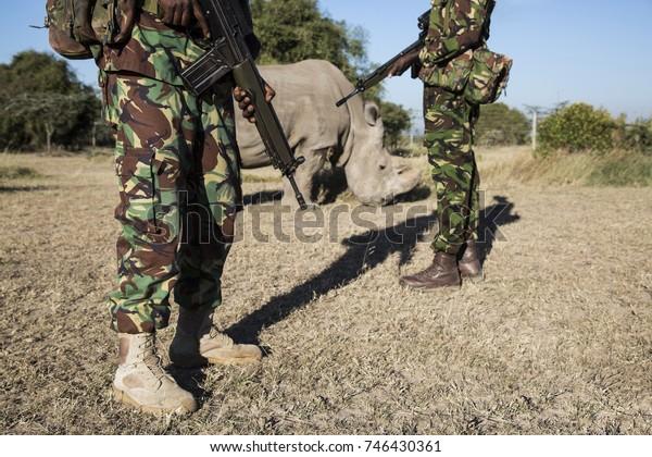 Last Northern White Rhino
