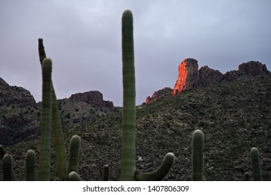 Last rays of sunshine on a rock in Tucson's Catalina Mountains