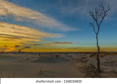 Late afternoon at the Edwin B. Forsythe National Wildlife Refuge in Long Beach Township, New Jersey