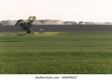 Late afternoon light over a rural farm field in upstate New York