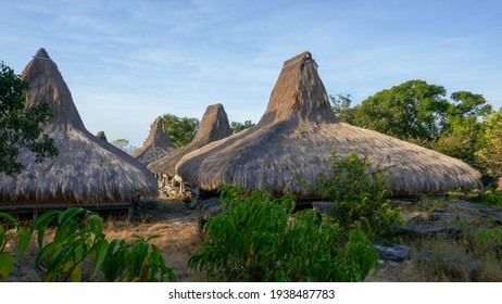 Late afternoon scenic view of traditional houses on stilts with thatched roofs in Prai Ijing village, Sumba island, East Nusa Tenggara, Indonesia