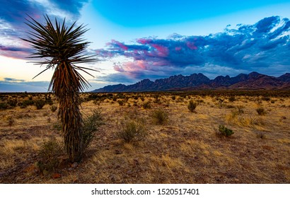 Late afternoon sun on the Organ Mountains near Las Cruces, New Mexico