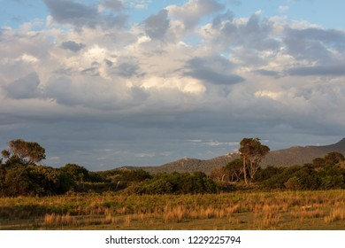 Late afternoon sun in Wilsons Promontory national park, Victoria, Australia