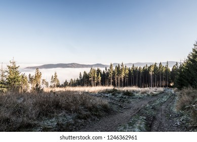 late autumn mountain scenery with trail, meadow, trees, mist , hills and clear sky above mist level near Kycera hill on Lysa hora mountain group in Moravskoslezske Beskydy mountains in Czech republic