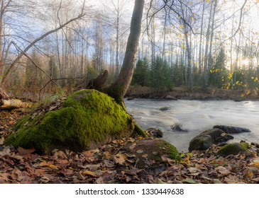 late autumn on the forest river. Leningrad region. Russia
