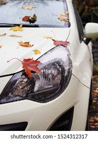 Late autumn, rainy, cold day. Autumn day, falling leaves on the rain-soaked hood of the car.