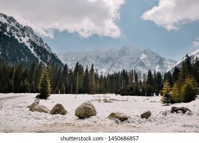 Late Autumn season in mountains. Scenic mountain forest. Tatra mountains. Poland