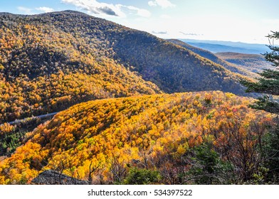 Late day light falls on the autumn colors of the Brandon Gap in Vermont.