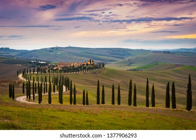 Late evening shoot in Asciano Valley of Tuscany. One of the famous location where beautifully aligned Cypress trees are found.