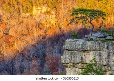 Late fall colors at sunset, Buzzards Roost overlook in Tennessee's Fall Creek Falls State Park