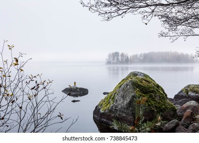 Late fall in the lake. Dark cold foggy morning.