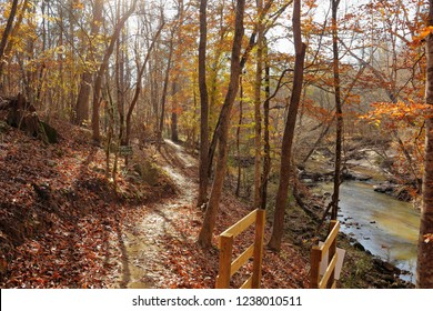 Late November Autumn trails in color in Fort Mill, South Carolina