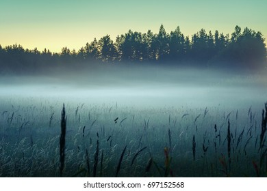 Late summer evening in dusky weather. Fog and mist covering the fields in Latvia. Mysterious mood created by gloomy fog and empty area.