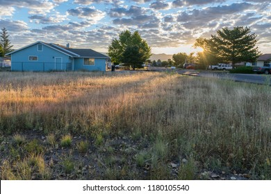 late summer morning sunrise with a blue sky and many small clouds. sun rays shine through a pine tree scattering sun light over a brown and red tall grassy field with a blue house in the back ground.