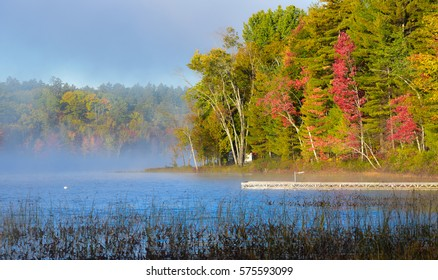 Late-summer, morning sun shines on mist rising from warmer woodland lake water.  Deciduous waterfront forest.  Dock extends from lakeside cottage country.