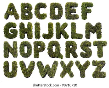 Latin alphabet letters made from grass on white