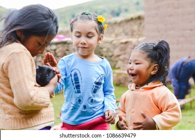 Latin children playing with black guinea pig in the countryside.