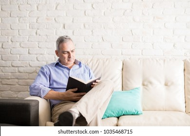 Latin man with gray hair sitting in the living room reading a novel to pass the time