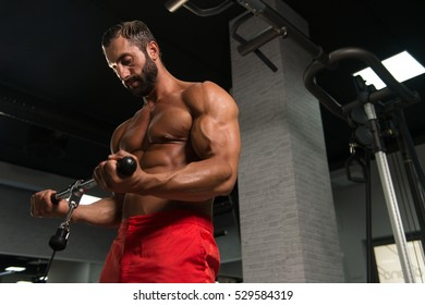 Latin Muscular Fitness Bodybuilder Doing Heavy Weight Exercise For Biceps On Machine With Cable In The Gym