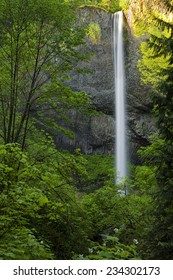 Latourell Falls, in Oregon's scenic Columbia River Gorge area, is a 249 foot high waterfall.