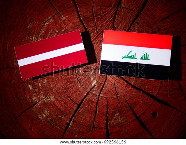 Latvia flag with Iraqi flag on a tree stump isolated
