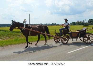 Latvia Kuldiga 02 July 2017, horse with carriages and coachman.