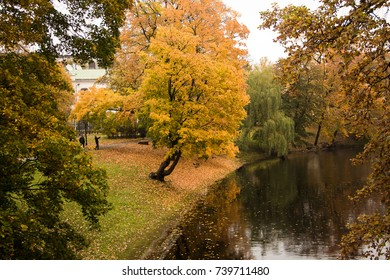 Latvia. The park in Riga. Golden autumn. Trees grow at the city channel.