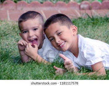 laughing brothers laying  in the grass with happy expressions