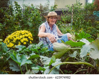 Laughing senior woman gardening among the flower beds on the floor