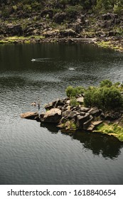 Launceston, Tasmania - January 3rd 2020: People swimming in the First Basin at Cataract Gorge.