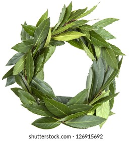 laurel wreath close-up on white background
