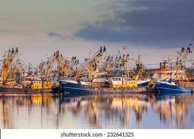 Lauwersoog harbours one of the biggest fishing fleets of the Netherlands. The fishery concentrates mainly on the catch of mussels, oysters, shrimp and flatfish in the Waddensea