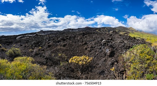 Lava Fields of the Teneguia Volcano in the   South of La Palma, Canary Islands, Spain, with vegetation starting to overgrow.