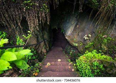 Lava tunnels of Santa Cruz Island, Galapagos Islands