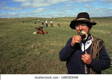 "LAVALLEJA/URUGUAY. Circa 2001. A ""Yerra"", traditional festivity to brand, castrate, and vaccinate the cattle. Is tradition to eat the roast bull testicles. A man eating roasted bull testicles."