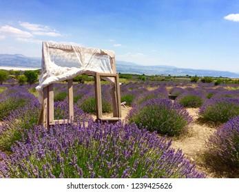 Lavander Garden Isparta Turkey