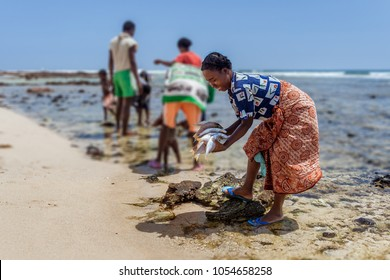 LAVANONO, MADAGASCAR, OCT 18: Malagasy woman preparing fish to the return of fishing on the beach of Lavanono in far south of Madagascar, on October 18, 2016