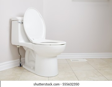 Lavatory pan and toilet paper. WC pan detail in white