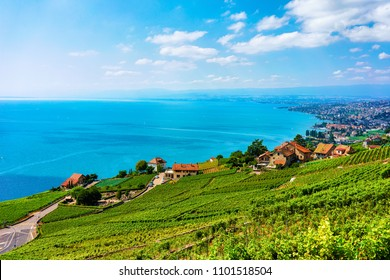 Lavaux, Switzerland - August 30, 2016: Landscape of Lavaux Vineyard Terrace hiking trail, Lake Geneva and Swiss mountains, Lavaux-Oron district, Switzerland