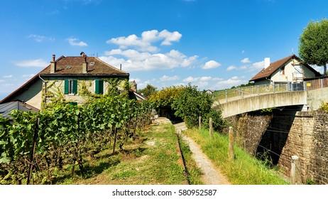 Lavaux, Switzerland - August 30, 2016: Chalets in Lavaux Vineyard Terraces hiking trail, Lavaux-Oron district, Swiss
