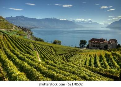 Lavaux Switzerland HDR photography