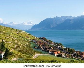 Lavaux, Switzerland: Landscape of Lavaux Vineyard Terrace hiking trail, Lake Geneva and Swiss mountains