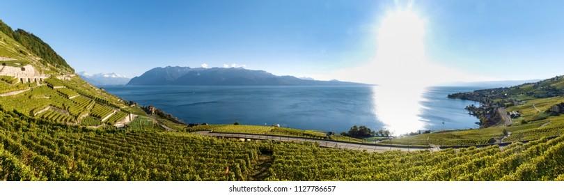 Lavaux, Switzerland: Landscape of Lavaux Vineyard Terrace hiking trail, Lake Geneva and Swiss mountains