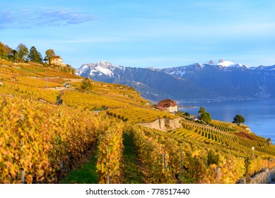 Lavaux Vineyard Terraces, Switzerland during sunset in autumn