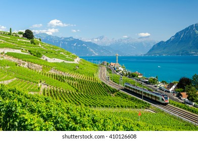 The Lavaux Vineyard Terraces UNESCO World Heritage Site near Lausanne, Switzerland along Lake Geneva