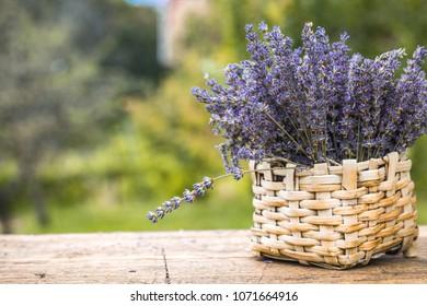 Lavender background. Lavender flower bunch on wood. Floral background