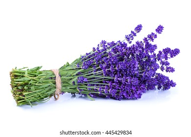 Lavender bunch tied with rope isolated on white background