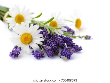 Lavender and Chamomiles flowers isolated on white background.