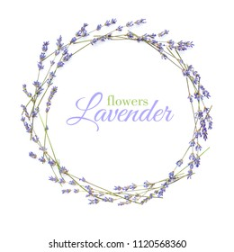 Lavender flowers arranged in circle with space for your text on a white background